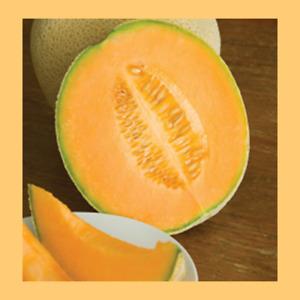 Heritage Seeds 10 FRUIT HALES BEST JUMBO - ROCKMELON