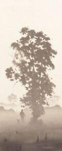 JOHN WATERHOUSE 'THE WALK 11 '  LTD EDT. GICLEE PRINT 50% OFF  SALE