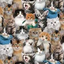 Back In Stock 1/2 Yard Cats & Kittens Elizabeth's Studio Multi CottonFabric