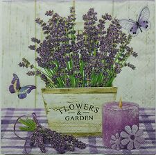 LAVENDER IN A POT  TWO(2) single LUNCH SIZE  paper napkins for decoupage 3-ply