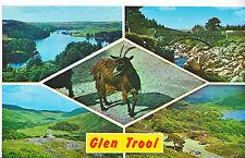 Scotland Postcard - Views of Loch Trool - Showing Goat    XX531