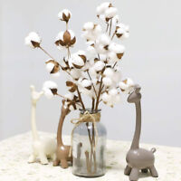 Naturally Dried Cotton Stems Farmhouse Artificial Flowers Filler Bouquet Home