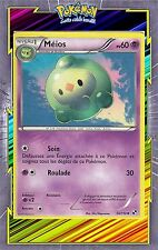 Méios - N&B: Noir et Blanc - 56/114 - Carte Pokemon Neuve Française