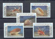 Fish Marine Life Comoros 746 - 50 Meeresschnecken (MNH)