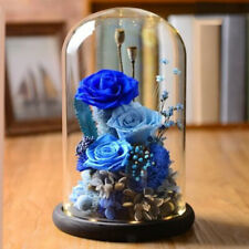 Clear Dust-proof Glass Plants and Flowers Holder Dome Display Cover w/ Base