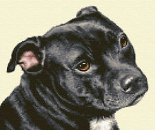 STAFFORDSHIRE BULL TERRIER dog - Full counted cross stitch kit