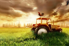 Country and City Rooster Tractor Urban Skyline Photo Art Print Poster 18x12