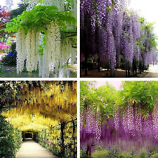 HANGING ARTIFICIAL SILK WISTERIA FAKE GARDEN FLOWERS PLANTS VINES DECOR KAWAII