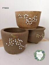 Plum blossom pattern clay pots for plants and succulents! Cactus pot
