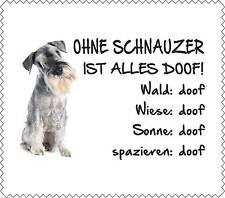 """Displaytuch Grauer Schnauzer """"ALLES DOOF"""" Brillenputztuch Hund Neu GT0037"""