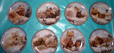 Lot of 8 Bob Henley Plates from the Sheltering Love Collection