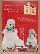 1954 poodle dogs photo Old Gold Cigarettes vintage print Ad