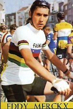 CYCLISME-WIELRENNEN-CICLISMO-TOUR DE FRANCE -1 PHOTO REPRO - EDDY MERCKX