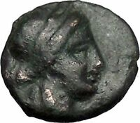 Thessalian League Larissa in Thessaly 196BC Apollo Athena Greek Coin i49248