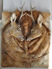 Taxidermie - Tableau de 2 têtes de chevreuils - Signé