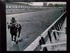 "SECRETARIAT GREAT 8 X 10  ""31 Lengths"" BELMONT STAKES HORSE RACING PHOTO!"