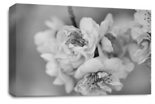 FLORAL FLOWER Canvas Picture Black Grey White Blossom Wall Art Print SET 1