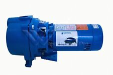 GT10B Goulds GT-10 1HP Sprinkler Irrigation Surface Water Well Pump ODP 1Ph