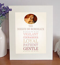 """Dogue de Bordeaux 10"""" x 8"""" Free Standing Breed Traits Picture Mount Fun Gift"""