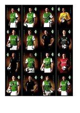 Autogrammkartensatz Werder Bremen 2009-10 37 Karten Original Signiert (237)