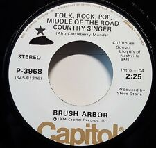 "Brush Arbor ""Folk, Rock, Pop Middle Of The Road Country Singer"" 45rpm PROMO NM"