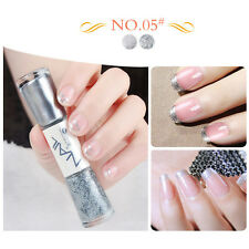 1Pc Dual-ended 14ml Liner Nail Polish Shining Silver Liner Pen Varnish #05