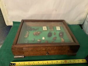 Vintage Wood &Glass Flat Museum ;Shop style Display Case , Curios,lock&key  99p