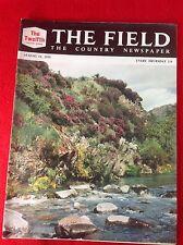 Vintage : THE FIELD magazine : 11 August 1955