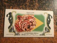 Jaguar Brazil 2010 Topps Allen & Ginter National Animals Mini Insert #9