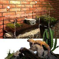 1pc Reptile Breeding Box Lizard Spider Cage Enclosure Terrarium Reptile Supplies