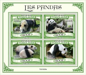 Togo 2021 MNH Wild Animals Stamps Giant Pandas Panda Bears Fauna 4v M/S