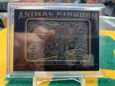 2019 Goodwin Champions Animal Kingdom Black Wallaroo