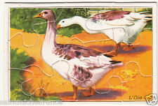 OIE GOOSE PUZZLE Collection 8,5X6 CM 9 pcs Toy  IMAGE CARD
