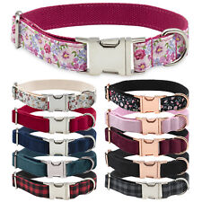 More details for luxury dog collar strong adjustable metal buckle with optional matching lead
