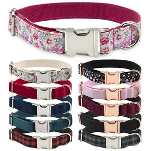Luxury Dog Collar Strong Adjustable Metal Buckle with Optional Matching Lead