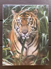 Springbok 500 Piece Puzzle, On The Prowl TIGER, Authentic, NEW and VINTAGE