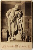 Italia Hercule Farnese Museo Napoli Foto Giorgio Sum Vintage Albumina c1870