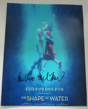 GUILLERMO DEL TORO signed 11x14 photo THE SHAPE OF WATER POSTER EXACT PROOF