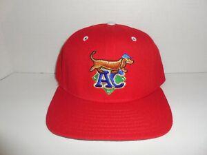 Rare VTG. AC Diamond Dogs Minor League Baseball 5950 Holiday Hat 7 3/8  NWOT