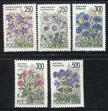 RUSSIA 1995 FLOWERS/NATURE/PLANTS/CAMPANULA/LEUCANTHENUM/TRIFOLIUM/GERANIUM MNH