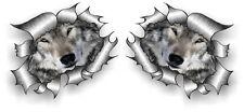Pequeño Par STD Rip RASGADO RASGADO De Metal Con Ojos Cara Bonita Wolf Lobos Pegatina de Coche
