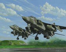 SEPECAT Jaguar 6 Squadron Sqn Aircraft Aeroplane Aviation Art Painting Print