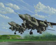 SEPECAT Jaguar 6 Squadron Sqn Aircraft Aeroplane Aviation Painting Art Print