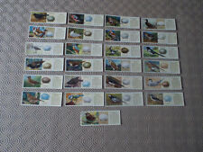 Birds Loose Collectable Typhoo Tea Cards