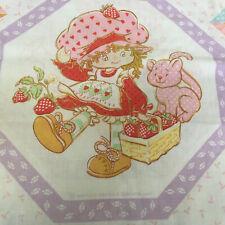 vintage strawberry shortcake sheet and pillow case strawberry shortcake friends