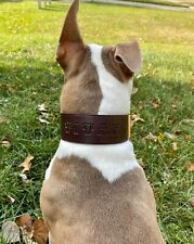 "Leather Dog Custom Collar Personalized FREE Name  2"" Wide Hand Made NEW"