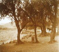 Marocco 1931 Foto Stereo PL58L8n12 Placca Da Lente