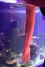 Tropical Bassin D'aquarium Maintenance Extra Long Gants En Caoutchouc Étanche