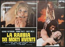CINEMA-fotobusta LA RABBIA DEI MORTI VIVENTI patterson