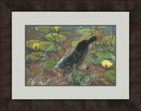 Airborne - Fish Framed Limited Edition Print by Mark A Susinno